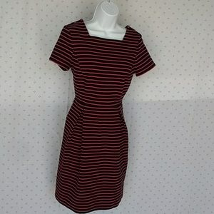 Talbots pink and black dress size 8 p
